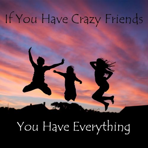 If-You-Have-Crazy-Friends-500x500 (1)