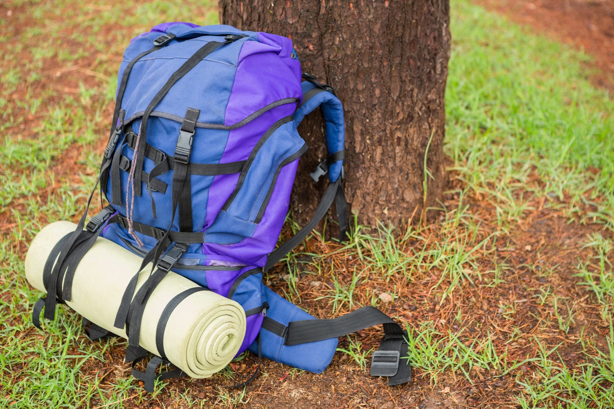 An hiking backpack and hiking pole leaning on a tree